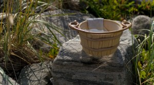 Japanese bucket